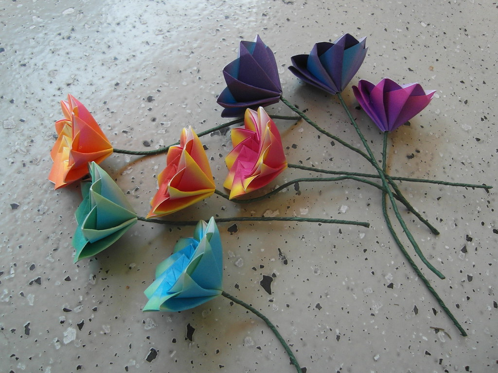 The Worlds Best Photos Of Dasssa And Origami Flickr Hive Mind