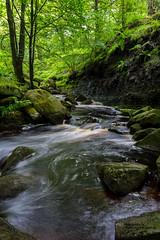 Padley Gorge (Aaron Miller Photo) Tags: park water misty flow nikon rocks long exposure outdoor district peakdistrict peak national gorge british brook flowing peaks burbage padley d7100