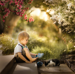 spot the cat 7 (iwona_podlasinska) Tags: flowers boy cat garden spring shoes child spot