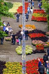 Bueren en fleurs (Lige 2016) (LiveFromLiege) Tags: montagne belgium belgique liege luik lige wallonie bueren lieja lttich liegi montagnedebueren visitliege buerenenfleurs