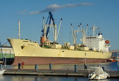 """""""Frio Dolphin"""" cargando naranjas en Castelln (mabra68) Tags: barco grao buque castellon frigorifico mercante"""