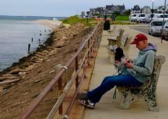 Martha's Vineyard (NeoRevolut1on) Tags: vacation dog ferry rhodeisland jaws marthasvineyard