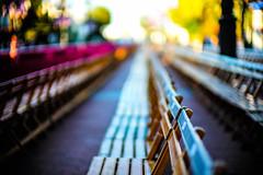 Take a seat, Ayamonte-1000567 (Night-Sky) Tags: fiesta chairs nightsky ayamonte