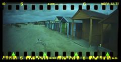 Beach Huts in Winter (fitzhughfella) Tags: 35mm analogue beachhuts agfaultra westwittering sprockets sprocketrocket