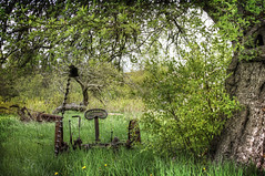 Under the Tree (sminky_pinky100 (In and Out)) Tags: old canada tree abandoned rural novascotia scenic rusty hdr annapolisvalley farmequipment landcape greenscene omot cans2s thenewmasterclass