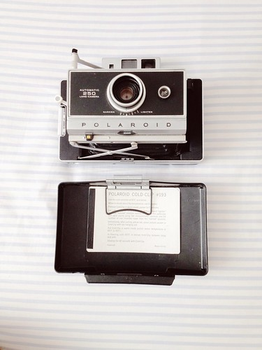 Polaroid Land 250