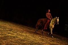 Porte (Visions of Raymond) Tags: show caballos performance cavalia hourse