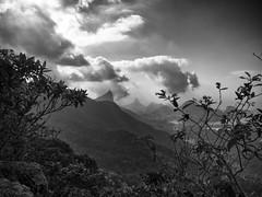 (Ande) Tags: brazil rio riodejaneiro forest bay corcovado lagoa sugarloaf carioca tijucaforest