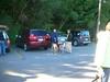 09-16-2012BreakheartReservation002_zpse7fce311