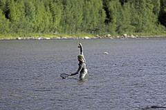_DSC6862 (Solan's Photo World) Tags: autumn people nature norway river fly fishing flyfishing hedmark glomma friland storelvdal