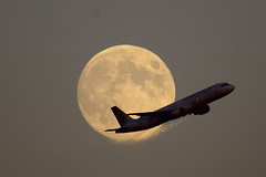 Air Canada Airbus climbing out in front of full Harvest Moon - Toronto Pearson .. (edk7) Tags: d300 edk7 2013 canada ontario mississauga toronto pearson yyz aircraft plane airplane airliner aviation jet jetliner commercial climbing aircanada airbus fullmoon harvestmoon engineexhaustheatwave sigma50500mm1463apodghsmex