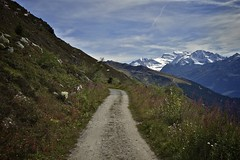 The balcony road from Croix de Coeur (A Swiss With A Pulse) Tags: mountain alps cycling switzerland wallis valais verbier myswitzerland