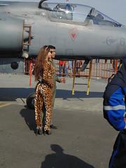 DSC00611 (el_visigodo) Tags: cat ecuador gata cheetah katze guayaquil fae guayas 2013 segu festivalareo gatasalvaje elvisigodo provinciadelguayas baseareasimnbolvar fuerzaareaecuatoriana festivalareofae2013 fuerzaareaecuatorianafae