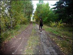 'tis autumn (featuring Capou & Iris de la Loupette)