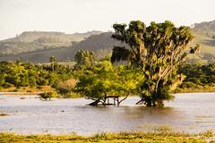 DOSCHEID-4485 (Diego Scheid Fotografia) Tags: rio canon landscape grande is do paisagem da stm efs santo sul antnio osrio f3556 650d t4i 18135mm patrulha