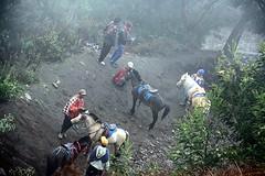 Seruni Point, Bromo (Ahmad Fuad Morad) Tags: indonesia bromo tengger mountbromo eastjava jawatimur bromotenggersemerunationalpark sukutengger tenggerese mountpananjakan gunungpananjakan serunipoint