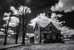 a family lived...a family died (Rodney Harvey) Tags: trees blackandwhite house abandoned oregon rural dead desert decay infrared lonely