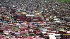 Larung Gar, Tibet 2013 (reurinkjan) Tags: monastery 2013 བོད་ལྗོངས། ©janreurink tibetanplateauབོད་མཐོ་སྒང་bötogang tibetབོད buddhistསངས་རྒྱས་ཆོས་ལུགས་པ nunneryཨ་ནི་དགོན་པ་anidgonpa monkགྲྭ་བ།grwaba buddhismསངས་རྒྱས་ཆོས་ལུགས།sangsrgyaschoslugs tibetannationalitytibetansབོད་རིགས།bodrigs tibetannationtibetanpeopleབོད་ཀྱི་མི་བརྒྱུདbökyimigyü nunཇོ་མོ།ani sisterhoodཨ་ནིའི་ཚོགས་པanitsokpa khamཁམས།easterntibet ༢༠༡༣ khamཁམས་བོད khamsbodkhamwö sertalགསེར་ཐར།countyserthar nyingmapahermitage khenpojikpunalsorecognizedastertonsogyeltheincarnationoflerablingpa gyutrullhakhang gyultrullhakang tonpeidekhang monasticcollegeshedraoflarunggar larungga བླ་རུང་སྒར། foundedbydudjomlingpa inthelate19thcentury greatertibetབོད་ཆེན་པོ böchenpo