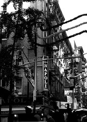 Carnivale (liska.kimberly) Tags: urban blackandwhite bw usa america downtown cityscape neighborhood amerika urbanlandscape vision:sky=0746 vision:outdoor=0909 vision:plant=0552
