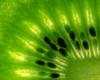 Flaming Green (Undertable) Tags: macro green fruit details kern grün kiwi makro frucht früchte kerne undertable durchleuchtet assamstadt flickrdiamond oliverbauer mygearandme mygearandmepremium flickrstruereflection1 flickrstruereflection2 infinitexposure