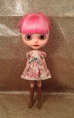 Cookie wearing Rosi