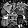 Umbrellas (Moving Subjects) Tags: park trees girls nature japan umbrella japanese kyoto 京都 日本 parasole game1980