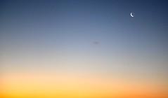 rising moon (aquepontochegamos) Tags: voyage park trip travel viaje sea newzealand summer sunlight praia beach bay mar pacific spirits nz verano viagem cape verão maori bayofislands northland kiwi voltaaomundo rtw travelers pacifico oceania mithology mitologia reigna aquepontochegamos routetheworld