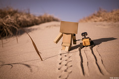 I ask the way to a danbo (kinopark) Tags: sahara walle danbo danboard