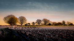 A winter landscape (Eric Goncalves) Tags: winter light england cold color nature beautiful canon landscape vibrant gloucestershire 6d ericgoncalves
