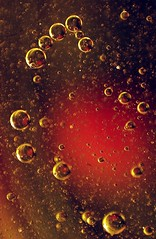 Just Another Supernova (stuant63) Tags: art cooking water ball droplets drops colours balls bubbles drop sphere round bubble oil liquid spheres globule globules tapwater cookingoil oildrops stuant63 stuartanthony
