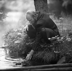 Into the wild (tupakamoru) Tags: 6x6 film analog darkroom mediumformat kodak d76 analogphotography filmphotography pentaconsixtl carlzeisssonnar18028