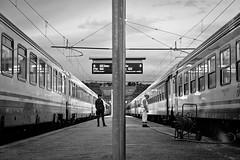 vite a confronto (petree.) Tags: street morning travel blackandwhite bw man station train work railway worker stazione treno viaggio biancoenero ancona lavoro prospettiva mattina ferrovia viaggiare