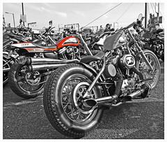 Storz and Bobber (The Landscape Motorcyclist) Tags: photoshop nikon df harley motorcycle custom vtwin calling davidson avon selectivecolour acecafe bobber storz flattracker supertrapp
