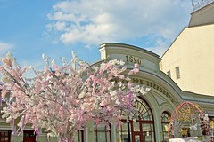 2016-05-03 at 17-23-39 (andreyshagin) Tags: trip travel summer sun building beautiful architecture daylight town nikon day russia moscow sunny tradition andrey d610 shagin