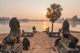 angkor - cambodge 2016 93