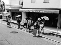 Shashin - DSCN4700 (Mathieu Perron) Tags: life city bridge people bw white black monochrome japan french nikon kyoto noir market perron daily nb journey   mp  march blanc japon franais institut personne ville gens vie mathieu    sjour   quotidienne       p520  zheld