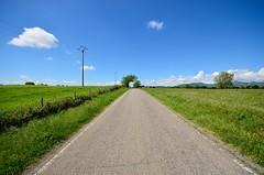 Lontano dal caos (Fabio Polimadei) Tags: road italien italy panorama landscape countryside nikon horizon tuscany countryroad maremma 10mm