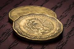 MXN (ruimc77) Tags: money macro ex mxico mexico coin nikon sigma 11 os mexican mexicano currency dinero moneda dg peso dinheiro 105mm 50c hsm d810 mxn