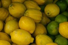 Limoenen en citroenen.Lemons and sour limes. (George Ino) Tags: copyright holland netherlands fruit utrecht citroen nederland lemons citrus lime citron lemonlime limoen vruchten georgeino georgeinohotmailcom naturenatuurnatur lemmetje sourlimes
