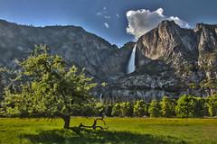 Yosemite Falls, Yosemite National Park (Mastery of Maps) Tags: california park ca trees sky green yosemitefalls nature water grass pine clouds forest outdoors waterfall nationalpark spring shadows natural meadows bluesky falls yosemite fields marsh yosemitenationalpark openspace naturalbeauty sierranevada iconic lonelytree yosemitevalley usnationalpark 2016 upperyosemitefalls