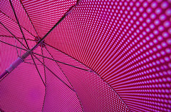 Umbrella (Miriam Cardoso de Souza) Tags: red rain umbrella photo chuva sombrinha petipoa