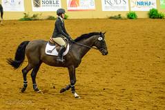 160505_D600_3676.jpg (shirley319) Tags: horse unitedstates lexington kentucky may nationals equestrian 2016 d600 horsecompetition ihsa kentuckyhorsepark