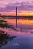 Washington Monument (Avisek Choudhury) Tags: sunrise landscape bluehour washingtonmonument gitzo tidalbasin washingntondc canon5dmarkiii avisekchoudhury acratechballhead canon2470mmf28lii avisekchoudhuryphotography