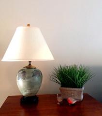 lamp birds