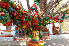 BELIEFS & COLORS (GOPAN G. NAIR [ GOPS Creativ ]) Tags: gopsorg gops gopsphotography gopangnair gopan photography colors colours belief hanging coconut ritual anegundi durga temple karnataka tourism india hindu
