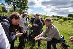 Demonstation of grass (JohannesLundberg) Tags: people person se sweden peoples persons botany biology excursion entomology knivsta uppsalalän ulfjohansson ulfswenson gredelbyhagar rasmushovmöller tobiasmalm