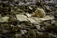 54. Pripyat School - Amongst the masks ([ Jaso ]) Tags: school abandoned scary nikon doll classroom pages empty nuclear books eerie ukraine gas masks disaster d750 educational emergency hollow chernobyl pripyat