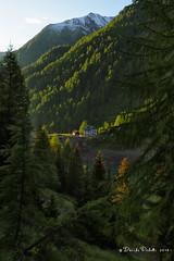 16-palu5 (Davide Podetti) Tags: parco val di dello pian peio stelvio pal valdisole