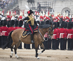England (richard.mcmanus.) Tags: london horse horseguardsparade england uk historic ceremony troopingofthecolour queensbirthday mcmanus