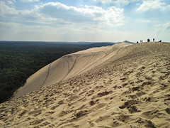 Dune du Pilat - Find your own path (photobrixie) Tags: france green phone path hill tracks paths aquitaine latestedebuch oneplus oneplus2
